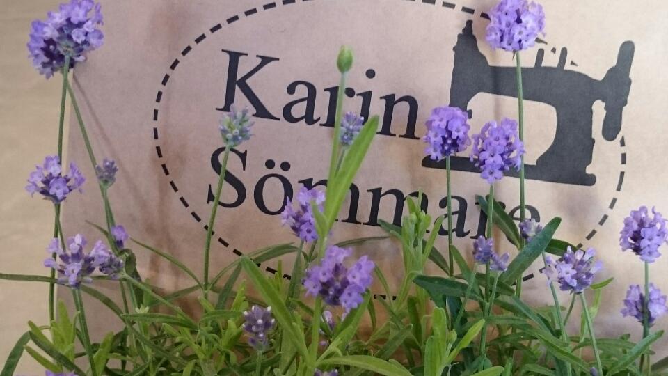 Karin Sömmare